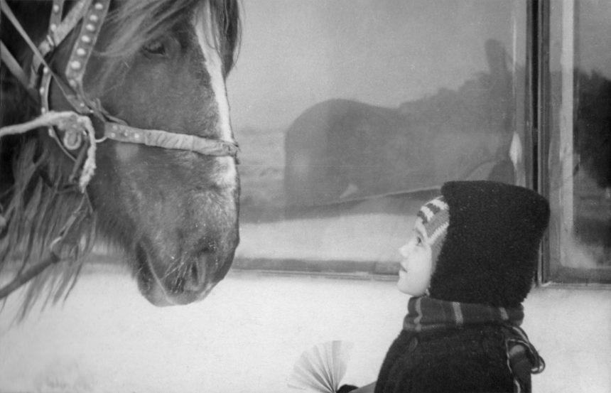 cropped-assia-and-horse-ps-2.jpg